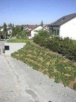 Terrasse und garten - Gartengestaltung programm ...